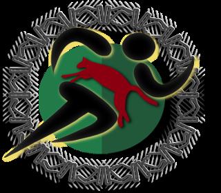 AAJDSR est une confédération d'associations créée en 2004 par des enseignants d'EPS, des éducateurs sportifs et des animateurs socioculturelles.